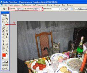 Кадрирование фотографии с помощью фотошопа